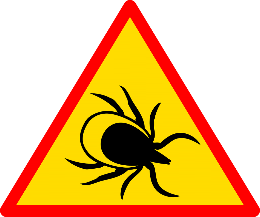 LYME DISEASE – ENJOY THE OUTDOORS WITHOUT A TICK